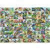 Ravensburger - Ninety-nine delightful birds, 1000 pcs - 2