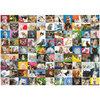 Ravensburger - Ninety-nine adorable cats, 1000 pcs - 2