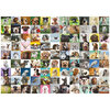 Ravensburger - Ninety-nine lovable dogs, 1000 pcs - 2